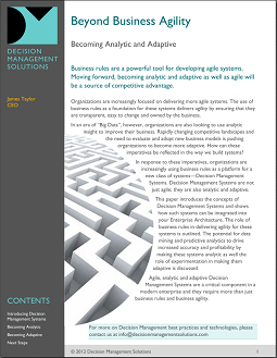 Beyond Business Agility
